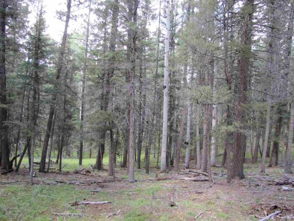 119 W. Pecos Canyon Estates Rd., Tererro, NM 87573 Photo 30