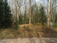 Home for sale: 000 N. County Rd. Ff, Butternut, WI 54514
