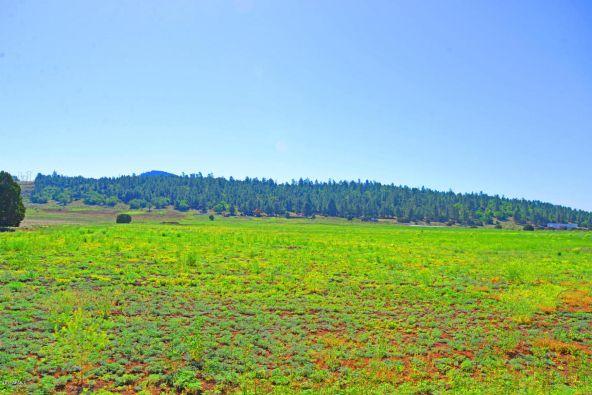 6701 N. Rain Valley Rd., Flagstaff, AZ 86004 Photo 23