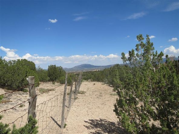 0 Pinon Park Trail, Sandia Park, NM 87047 Photo 20