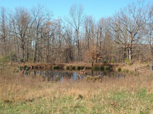 1059 Pleasant Run Rd., Mammoth Spring, AR 72554 Photo 23