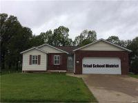 Home for sale: 117 Jessica Dr., Saint Jacob, IL 62281