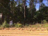 Home for sale: 2 Concord Rd., Ludowici, GA 31316