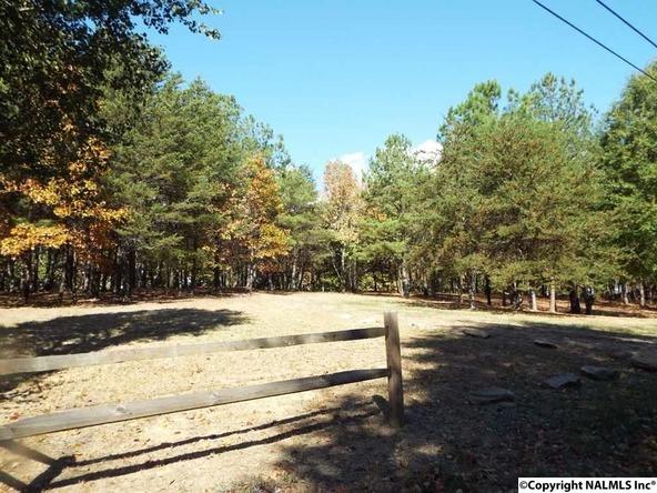 11 S. County Rd. 89, Mentone, AL 35984 Photo 25