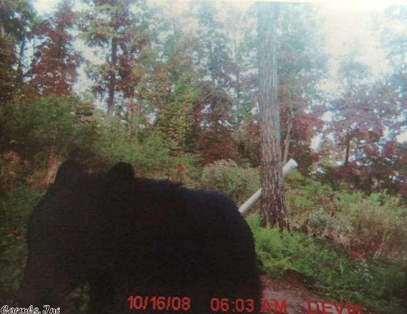 1127 Nature Dr., Saint Joe, AR 72675 Photo 8