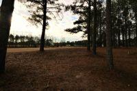 Home for sale: 106 N. Micahs Way North Way, Spring Lake, NC 28390