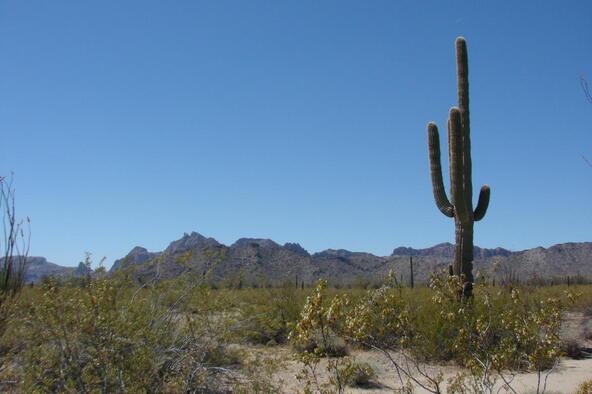 3xx N. 557th Avenue, Tonopah, AZ 85354 Photo 11
