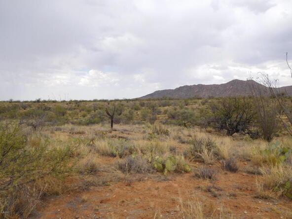 16705 S. Sierrita Mountain, Tucson, AZ 85736 Photo 34