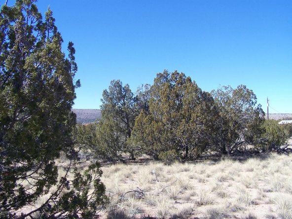 27145 W. Fort Rock Rd., Seligman, AZ 86337 Photo 3