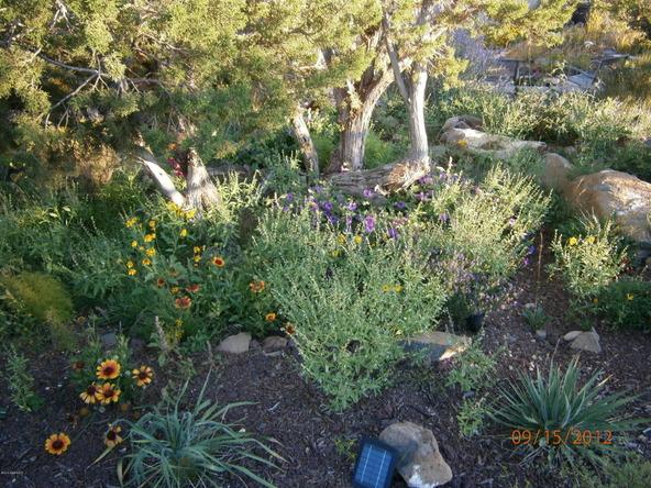 10922 S. High Mesa Trail, Williams, AZ 86046 Photo 54