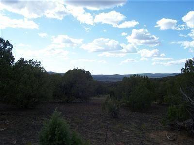 511 Martinez - Wwr Lot 511, Seligman, AZ 86337 Photo 22