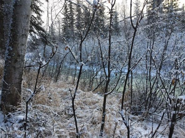 52738 S. Snowy Owl Cir., Willow, AK 99688 Photo 58