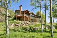 Home for sale: 9180 Co Rd. 117, Glenwood Springs, CO 81601