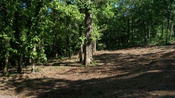 44 Pine Trail, Higden, AR 72067 Photo 6