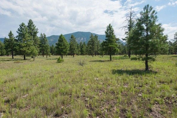 8r Lockett Ranches, Flagstaff, AZ 86001 Photo 12