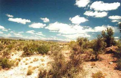 2450 S. Tissaw Rd., Cornville, AZ 86325 Photo 3