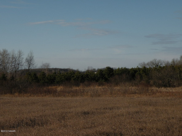 County Rd. 138, Parkers Prairie, MN 56361 Photo 24