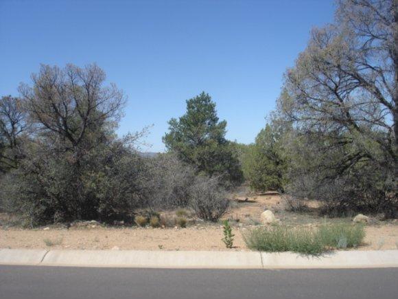 14480 N. Soza Mesa Ln., Prescott, AZ 86305 Photo 8