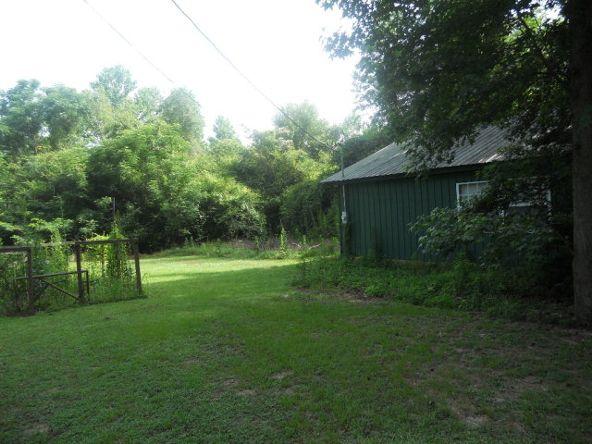 4283 County Rd. 3339, Brundidge, AL 36010 Photo 13
