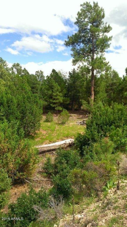 7205 Mogollon Trail, Happy Jack, AZ 86024 Photo 1
