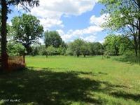 Home for sale: 21259 Collier Avenue, Battle Creek, MI 49017
