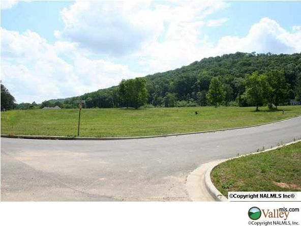 111 Lake Creek Dr., Guntersville, AL 35976 Photo 5