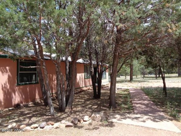 2863 Pine Rim Rd., Overgaard, AZ 85933 Photo 25