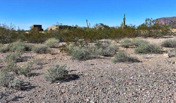 3636 S. Quail Crest St., Gold Canyon, AZ 85118 Photo 20