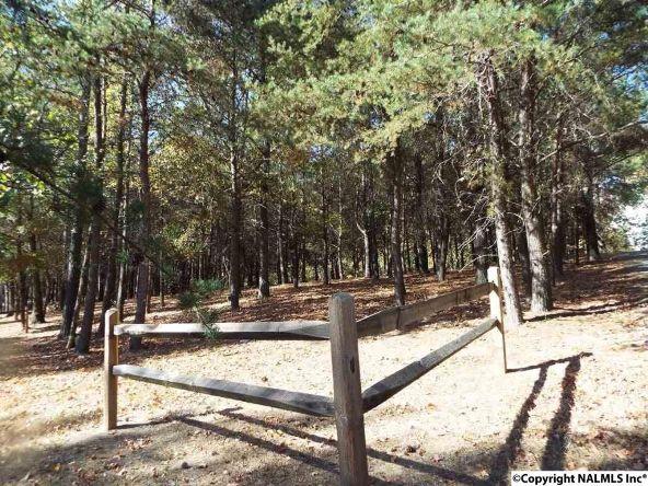 16 S. County Rd. 89, Mentone, AL 35984 Photo 24