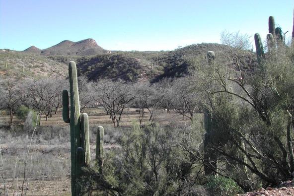 88725 E. Aravaipa Vistas, Winkelman, AZ 85192 Photo 8