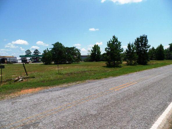87 Hwy. 84, Monroeville, AL 36460 Photo 19