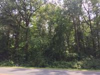 Home for sale: Lot 30 Pine Log Rd., Lumberton, NC 28358