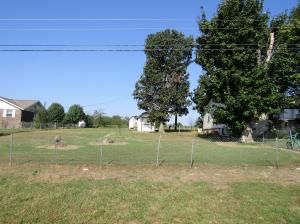 60 103 South Hwy., Green Forest, AR 72638 Photo 5