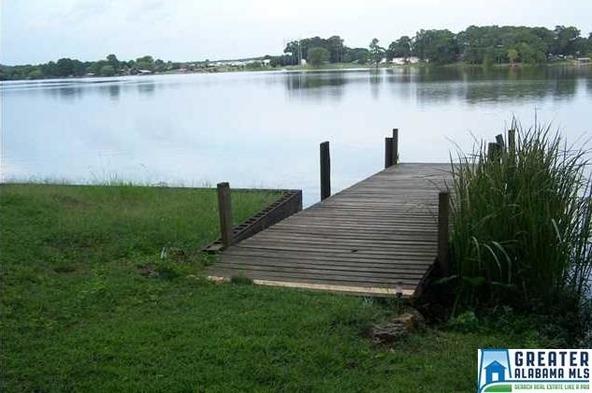 1685 Shelton Shores, Lincoln, AL 35096 Photo 26