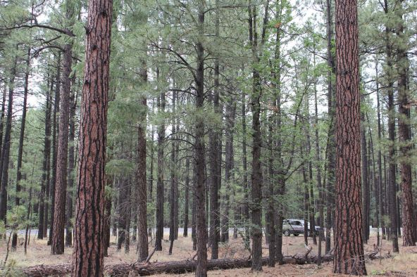 4045 Buck Springs Rd., Pinetop, AZ 85935 Photo 9