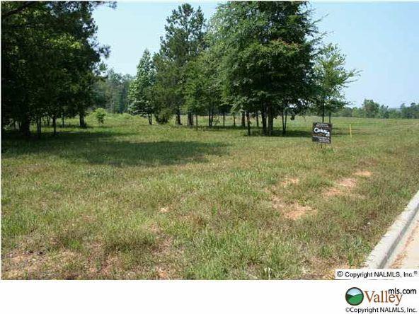 101 Lake Creek Dr., Guntersville, AL 35976 Photo 4