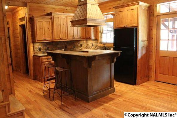 4475 County Rd. 106, Mentone, AL 35967 Photo 15