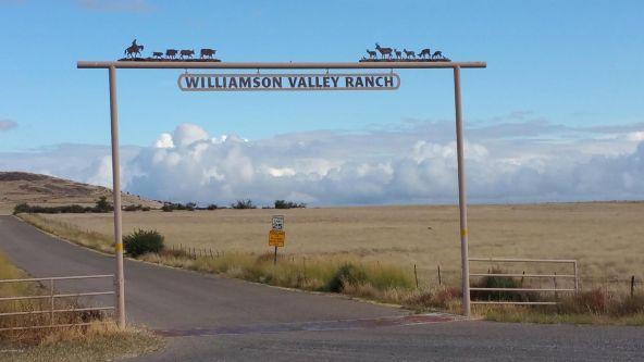 11905 N. Cowboy Trail, Prescott, AZ 86305 Photo 3