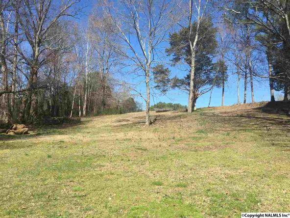 439 Elkwood Section Rd., Hazel Green, AL 35750 Photo 14