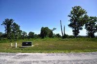 Home for sale: 2510 Emory Creek Blvd., Branson, MO 65616