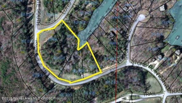 151-155 Stoney Pointe Landing, Double Springs, AL 35553 Photo 1