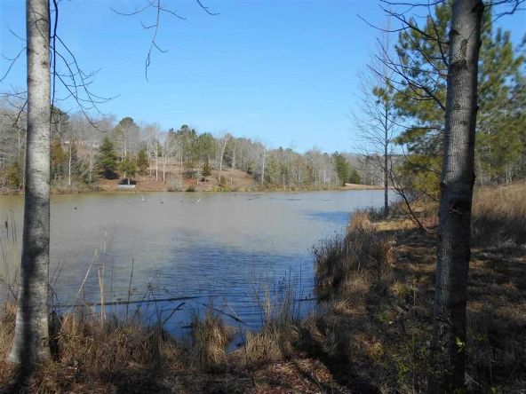 16.9 Acres Private Rd. 1363, Ariton, AL 36311 Photo 7