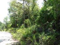 Home for sale: Tbd Clark Rd., Monticello, FL 32344