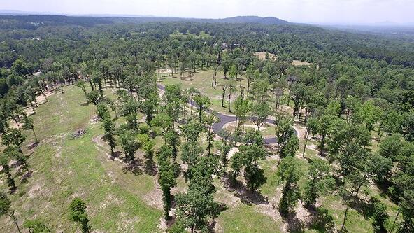 183 Ridgehaven, Hot Springs, AR 71913 Photo 12