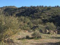 Home for sale: Lot 036 Burro Creek Crossing, Wikieup, AZ 85360