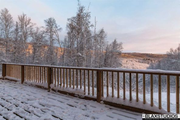 1150 Amanita Rd., Fairbanks, AK 99712 Photo 18