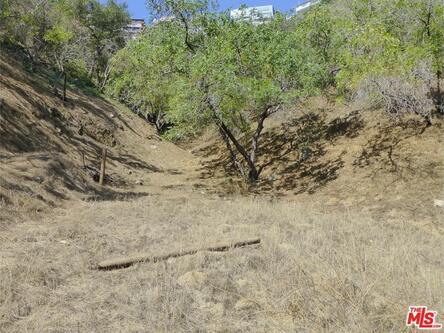 2251 N. Oakden Dr., Los Angeles, CA 90046 Photo 12