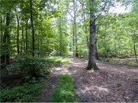 Home for sale: 00 Burleson Rd., Albemarle, NC 28001