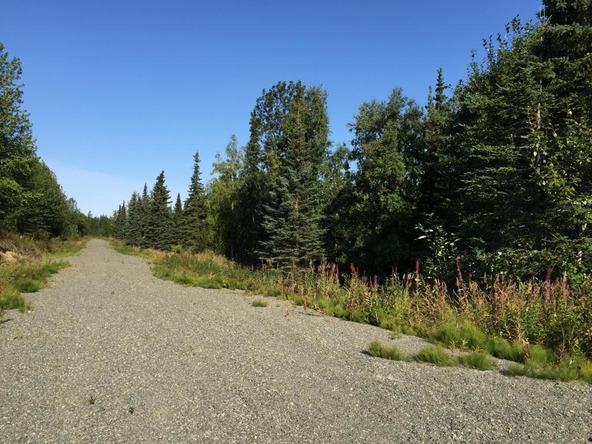 63787 Oil Well Rd., Ninilchik, AK 99639 Photo 27