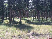 Home for sale: 4030 Blue Mesa, Powderhorn, CO 81230